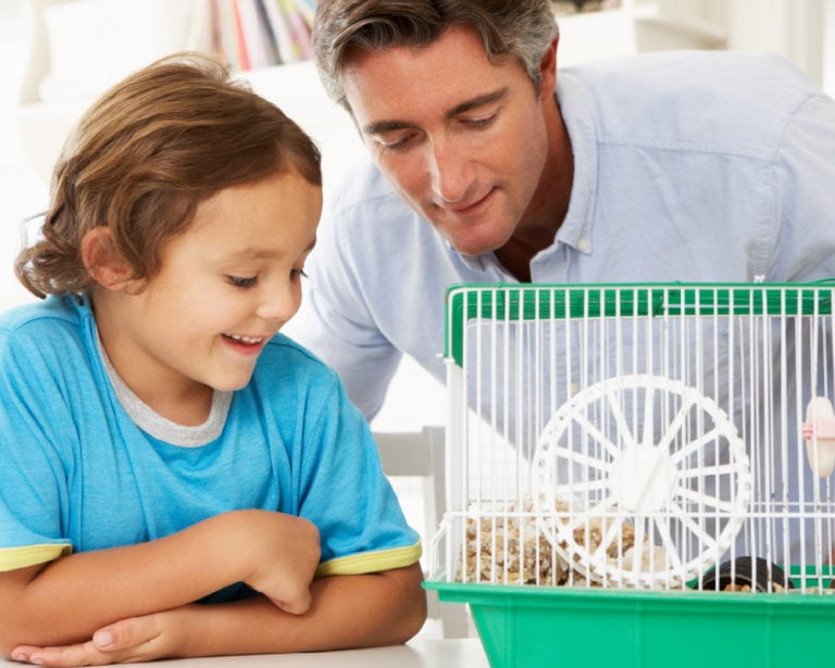 Father and Son looking at hamster pet