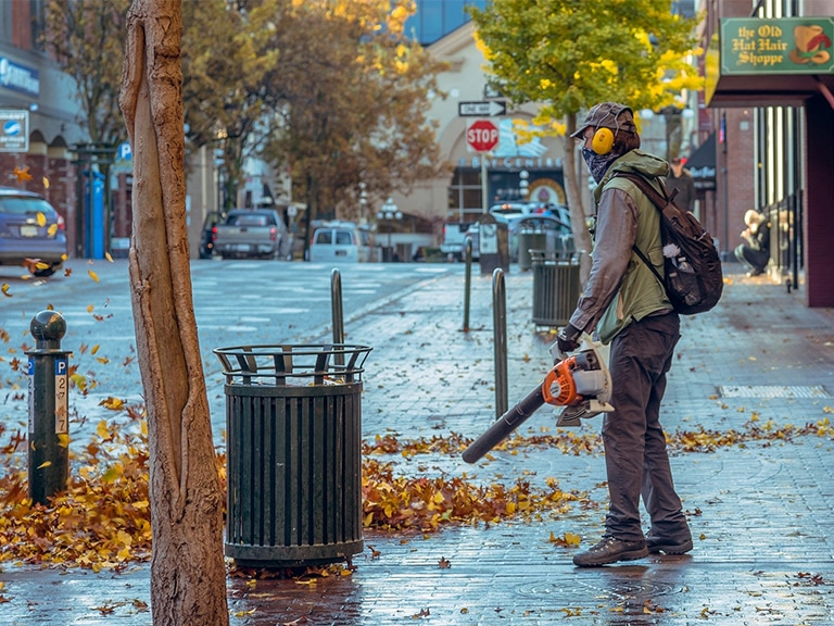 Silent Home Hub Quiet Leaf Blowers