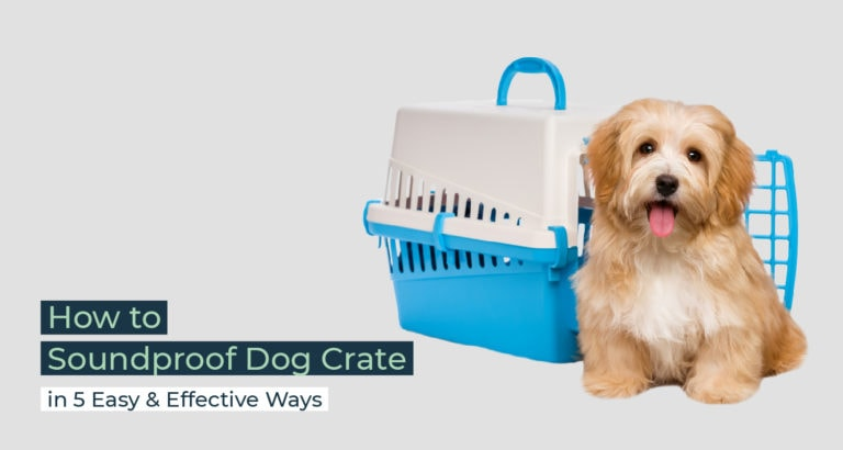 Silent Home Hub Soundproof Dog Crate